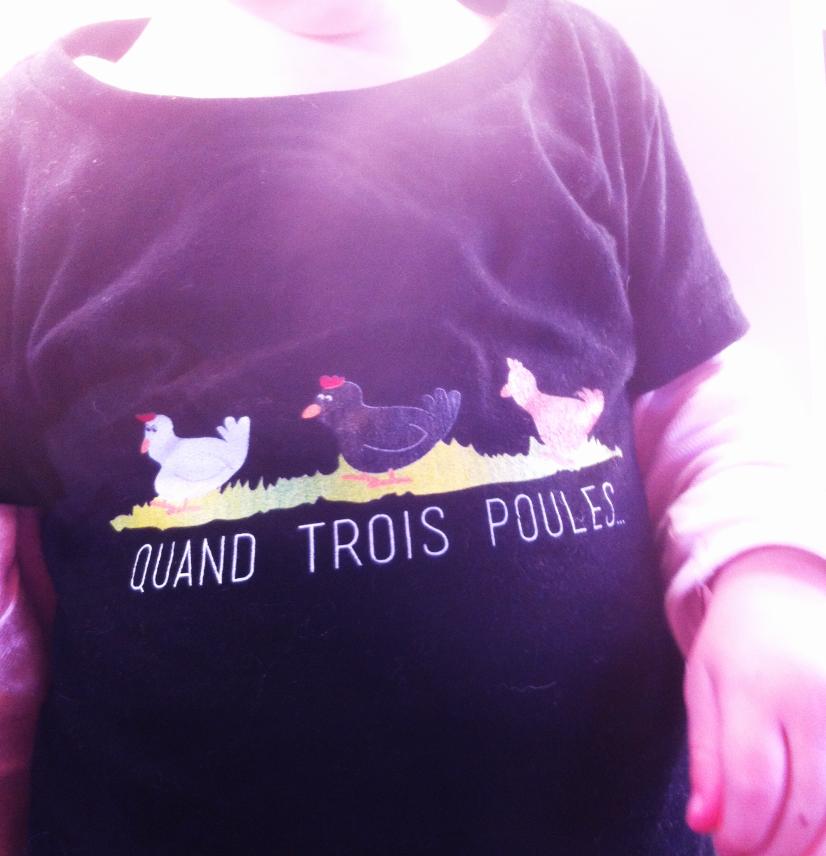 DTG_poules