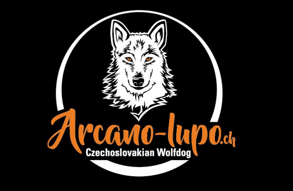 logo_arcano